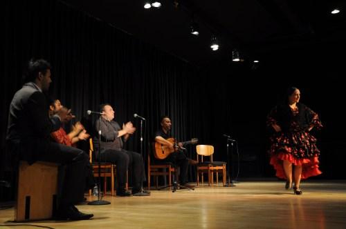 Festival Flamenco (Foto:  Juan Francisco Zuleta Orjuela)