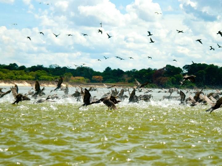 Costa Marques – Potencial turístico em larga escala