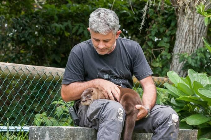 Coronavírus: Lontras vivem isolamento com cuidador de animais em SC
