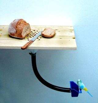 Invento - Recoge migas para pájaros