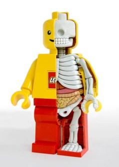 Anatomía Muñeco Lego