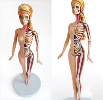 Anatomía Barbie