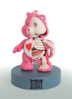Anatomía Osito Amoroso