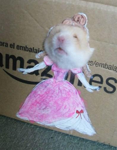 Ratita Princesa