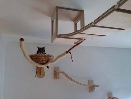 Arquitectura de Diseño y Funcionalidad para Gatos.