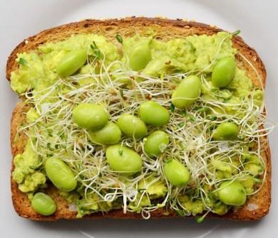 Aguacate + Brotes de Alfalfa