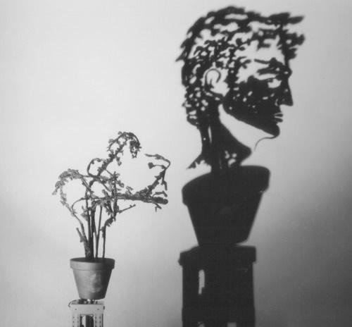 Turning Plant.