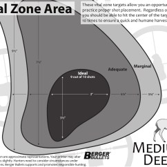 Whitetail Deer Vital Area Diagram 2004 Saturn Ion Engine Free Zone Targets From Berger Bullets Revivaler