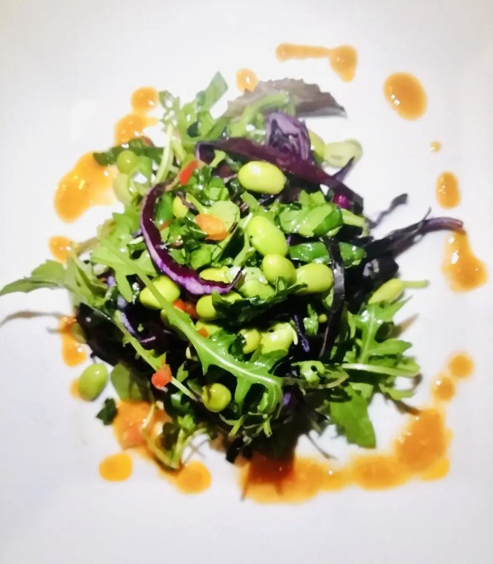 mixed leaf salad, broad beans, a roasted red pepper dressing, including wasabi mayo with a carrot and apple slaw.