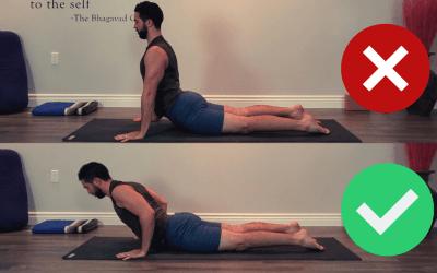 Vinyasa Basics Stage 1