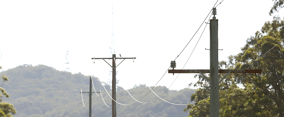 Decay Issues in Your Wood Pole Network
