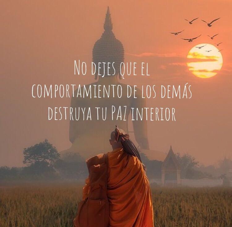 Las 100 Mejores Frases Del Dalai Lama Revolución Personal