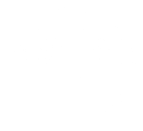 rp_rev-logo-100-round-1024x941.png