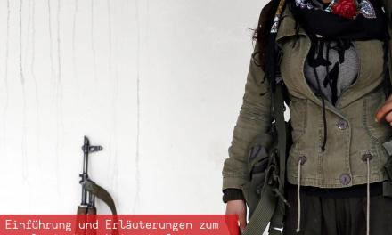 Report Rojava – Buchvorstellung mit dem Revolutionären Aufbau Schweiz