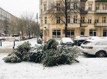 Travelguide Berlin: Weihnachtsbäume werden in Berlin (nicht) abgeholt