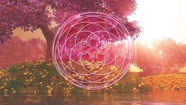 Activation planétaire de la Sororité de la Rose