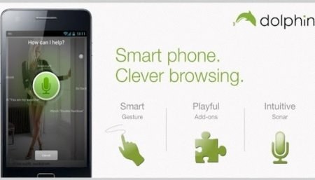 Dolphin - A Great Web Browser for Android