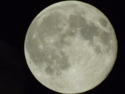 June moon 2013 010