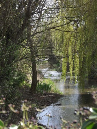the river Thames, near Cirencester