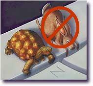 Turtlealong