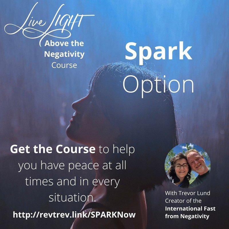 Live LIGHT Above the Negativity Course