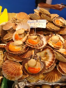n68-Coquilles_Saint-Jacques