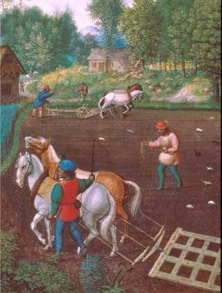 Il s'agit d'une illustration datant du Moyen-âge représentant la vie agricole : des paysans sèment et labourent la terre avec une herse