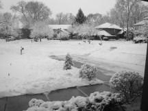 Première fois que je pratiquais la pelle à neige pour déblayer le driveway de notre maison, près de Chicago.