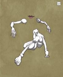 bras et jambes