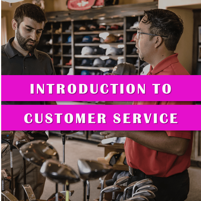 Introduction to Customer Service Level 1