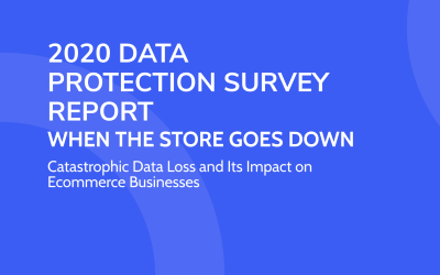 Data Protection Survey Report