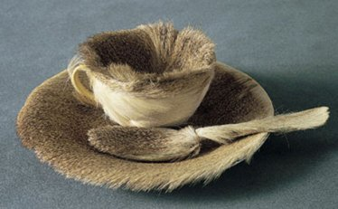 Meret Oppenheim - Fur Cup