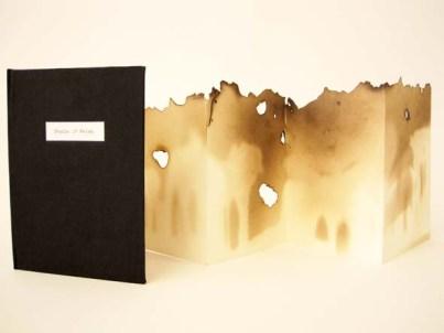 sarah-book-shadow-of-reims-concertina-20141