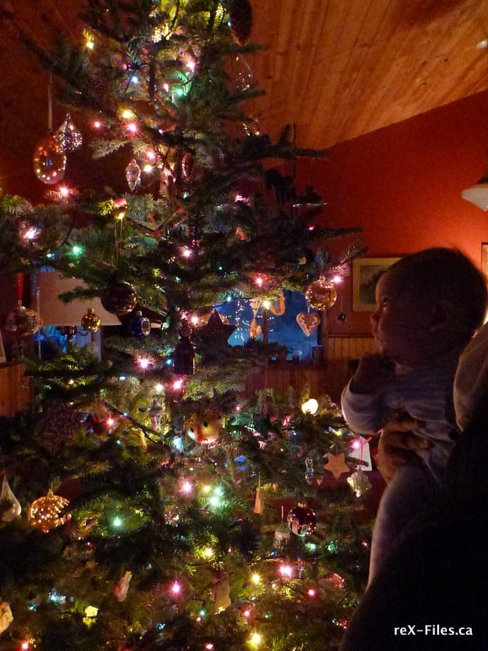 Arlo's first Christmas tree