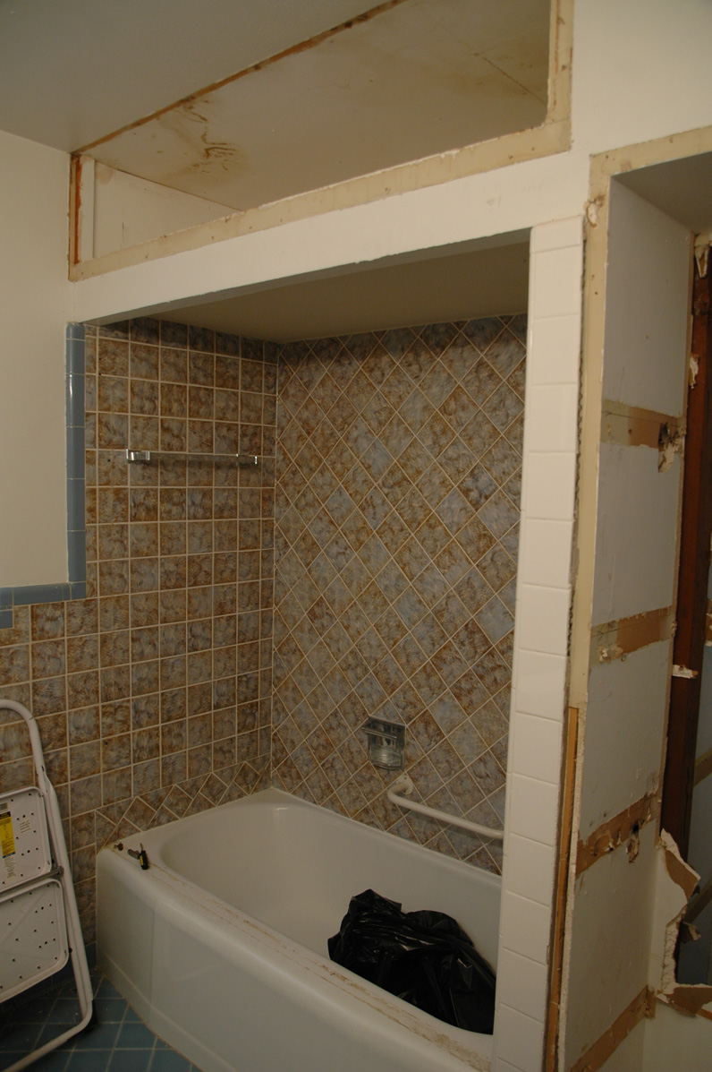 Project One Hall Bathroom  Rexton Remodel