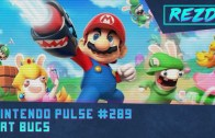 Nintendo Pulse #289 – Art Bugs