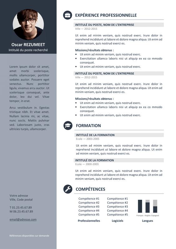 Orienta Modèle De CV Professionnel Rezumeet Com