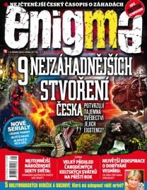 Enigma 1/2020