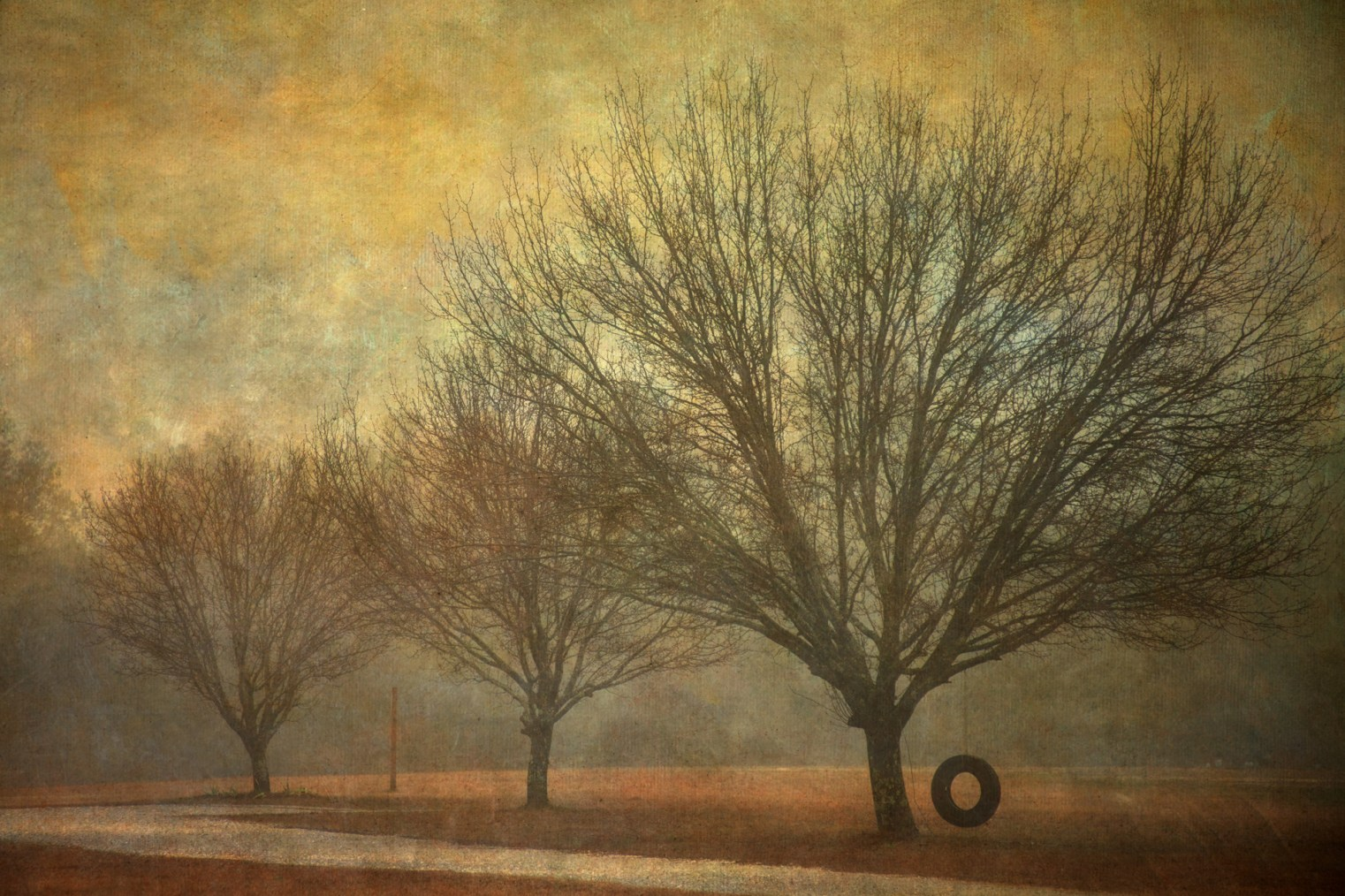 Winter © Vicki Wilson Hunt
