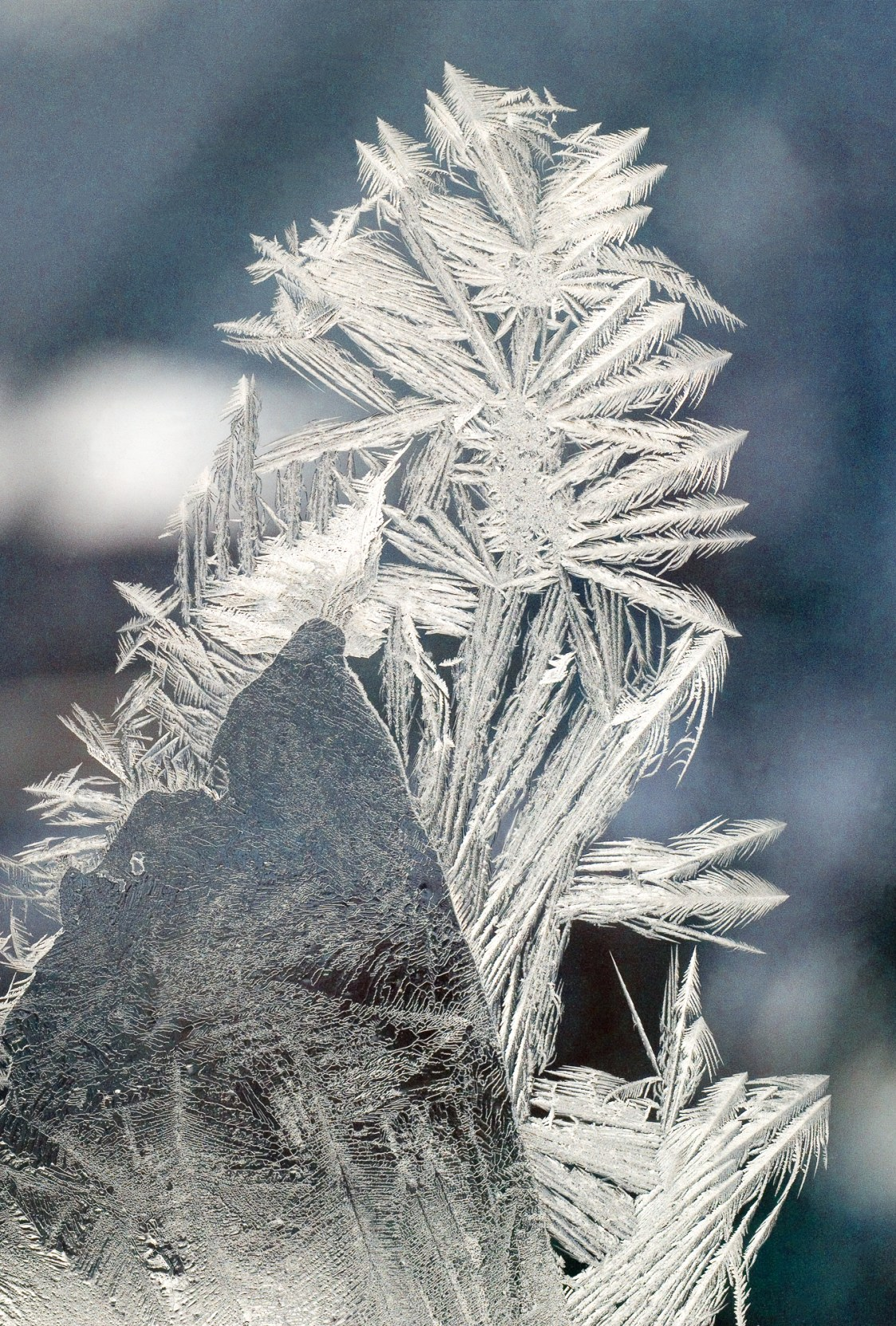 Snow Warrior © Cy DeCosse