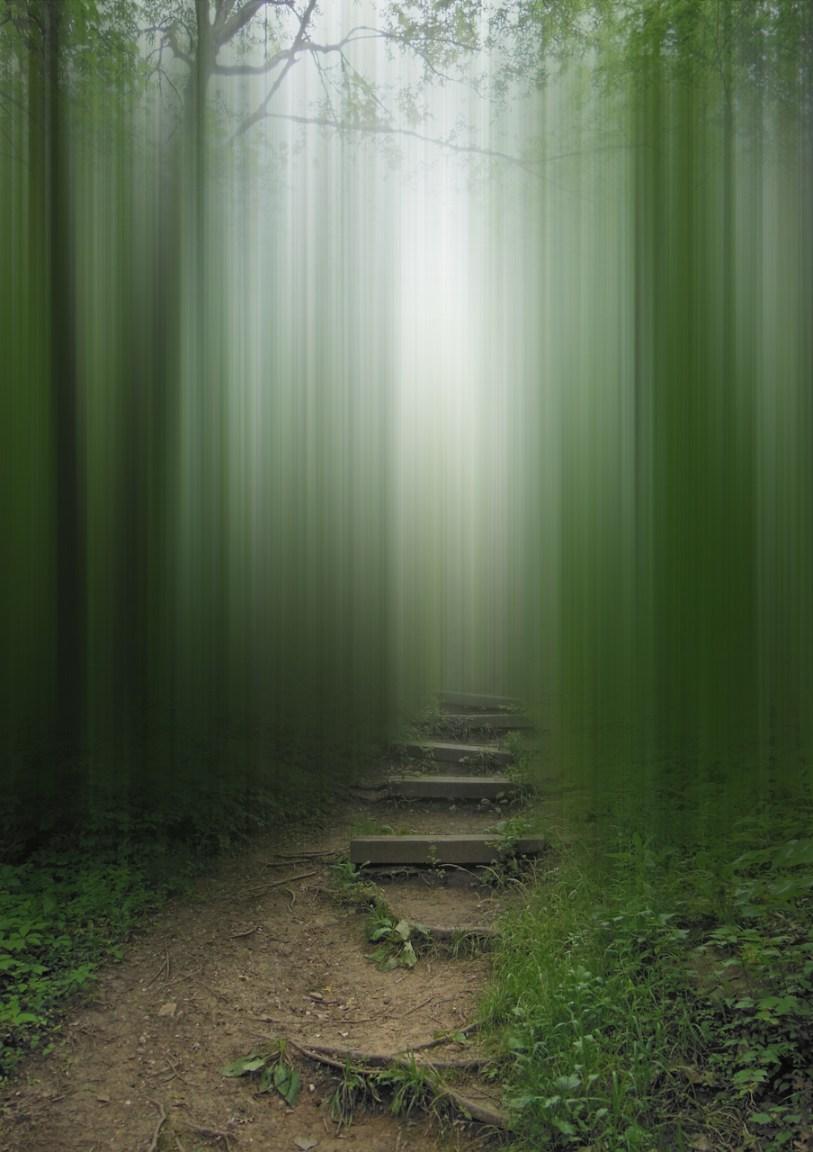 Let The Others Follow © Ellen Jantzen