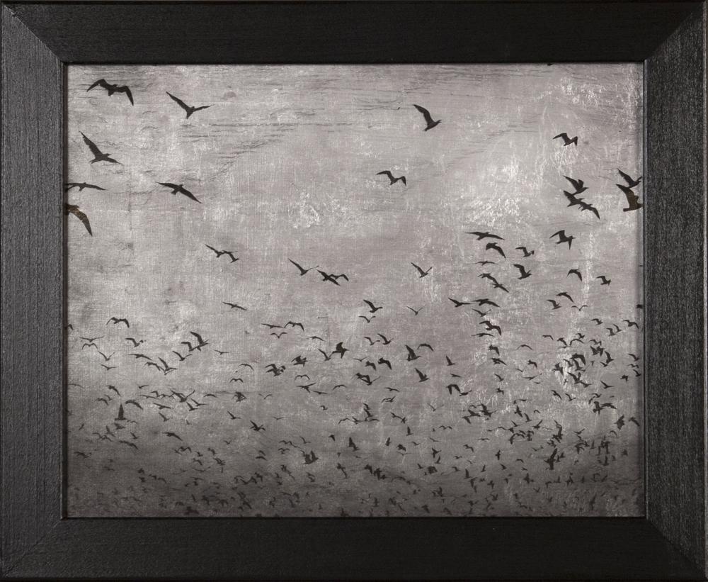 Sky's Escape © Blue Mitchell