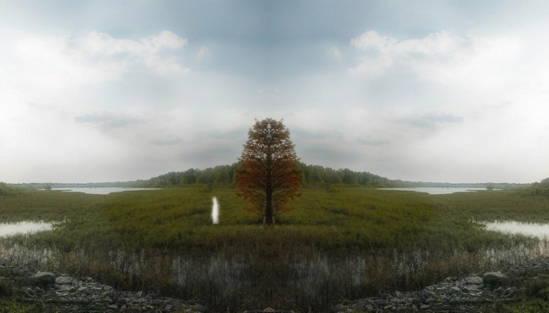 Trailing Autumn © Ellen Jantzen