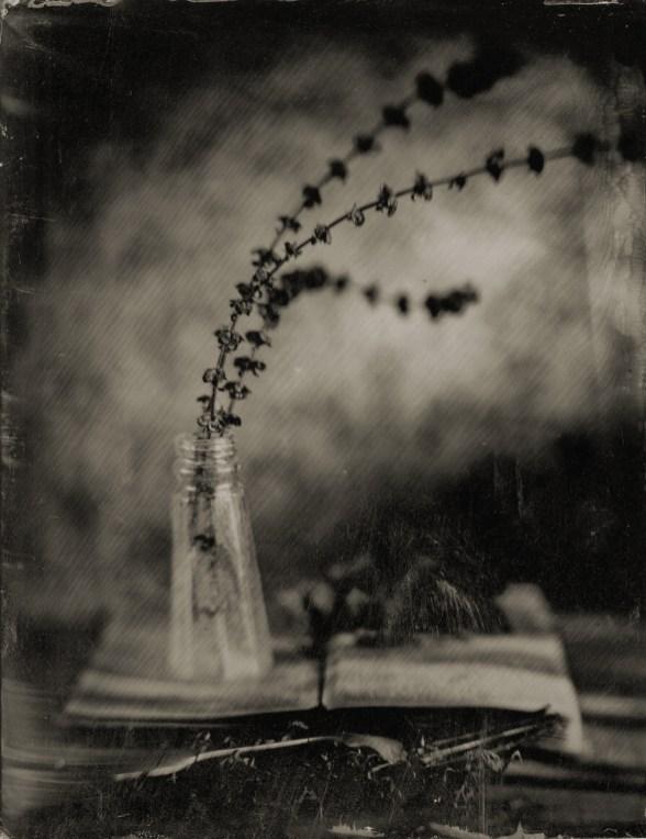 Untold Stories 15 © Jim Sincock