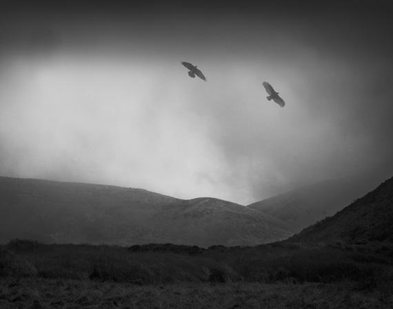 Odin's Cove 4 © Beth Moon
