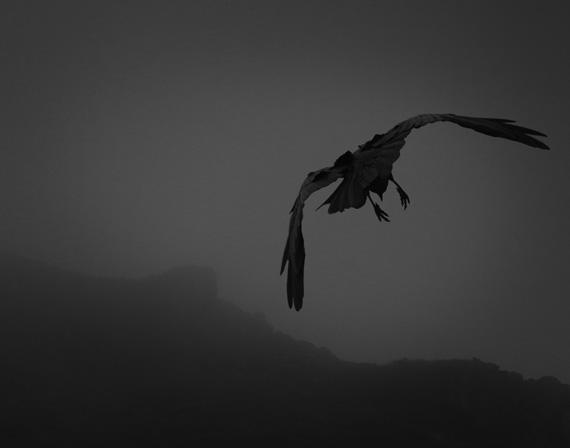 Odin's Cove 6 © Beth Moon