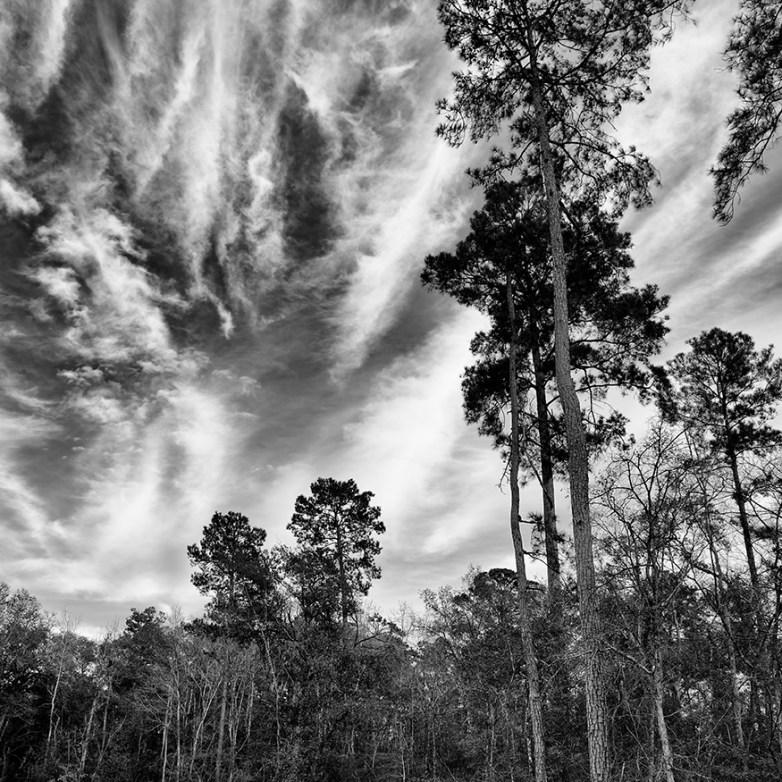 Sky © J.Rosenthal