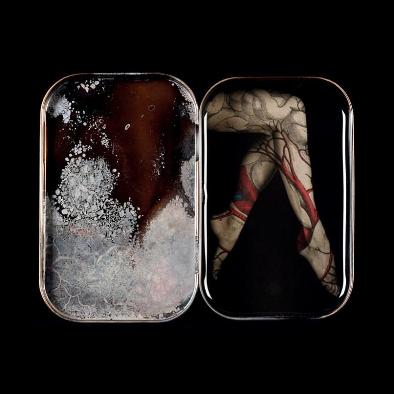 Bloodline © Heidi Kirkpatrick