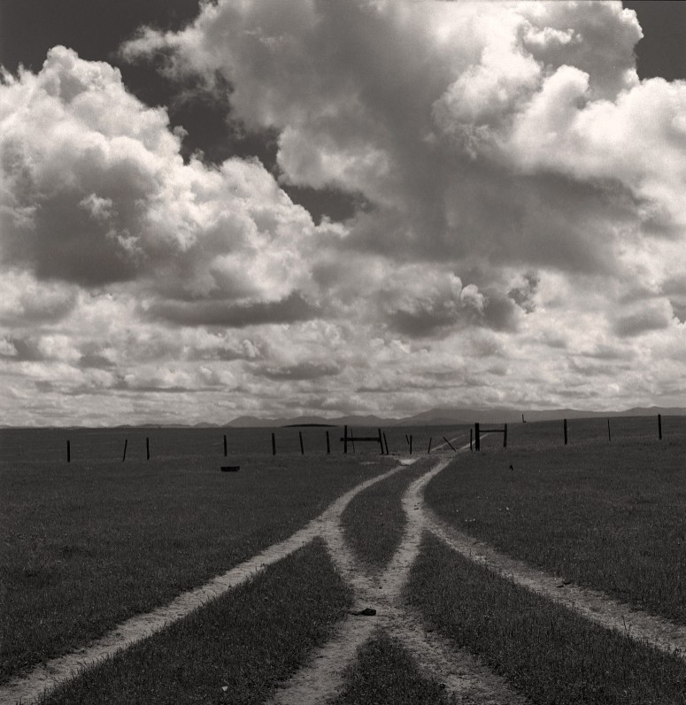 Cross Roads © Birgit Maddox