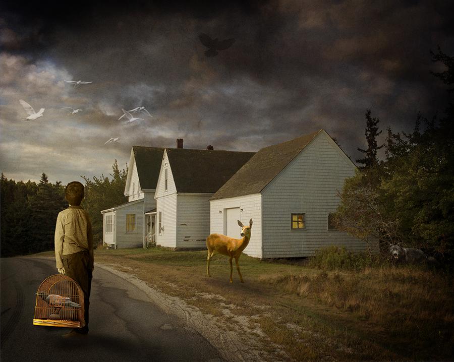 Deer Isle Morning Visit © Fran Forman